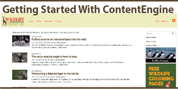 Getting Started With ContentEngine